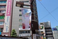 24_artist_flag.jpg