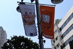 55_artist_flag.jpg
