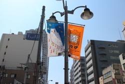57_artist_flag.jpg